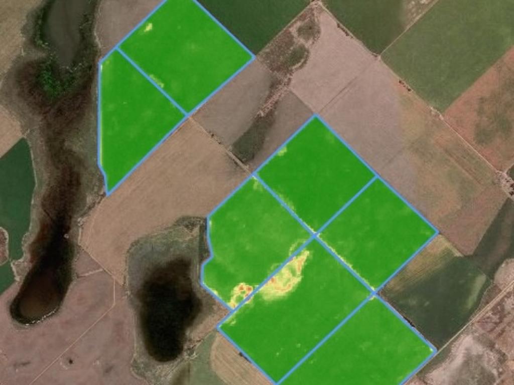 campo vista aerea